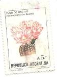 Stamps Argentina -  Flores