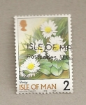 Stamps Europe - Isle of Man -  Margarita