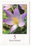 Stamps : Europe : Germany :  krokus