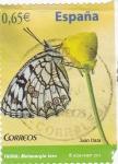 Sellos de Europa - España -  mariposa