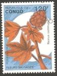 Stamps : Africa : Republic_of_the_Congo :  flor ricinus communis