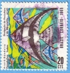 Stamps : America : Brazil :  Acará Bandeira