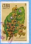 Stamps Cuba -  Albahaca Morada