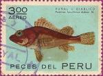 Sellos de America - Perú -  Peces del Perú: PUÑAL o DIABLICO Pontinus forcirhinus dubjus St.