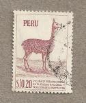 Stamps Peru -  Vicuña