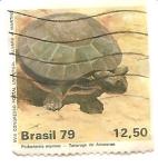 Stamps Brazil -  Tortuga de Amazonas