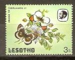 Stamps Africa - Lesotho -  ORANGE   TIP