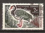 Sellos del Mundo : Africa : Costa_de_Marfil : Plectropterus gambensis (ganso con espolones).