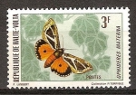 Stamps Africa - Central African Republic -  Mariposas. Ophideres Materna.(Alto Volta-indp.fra).