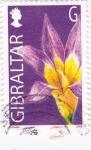 Stamps Gibraltar -  flores