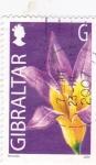 Sellos de Europa - Gibraltar -  flores