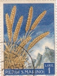 Stamps San Marino -  trigo