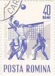 Sellos de Europa - Rumania -  campeonato europeo de volei