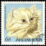Stamps Hungary -  Gato de angora dorado. 1968.