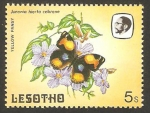 Stamps : Africa : Lesotho :  565 - mariposa
