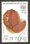 Stamps Nicaragua -  40 anivº de la FAO, pitahaya