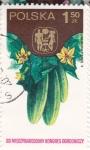Stamps Poland -  pepinos