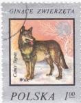 Sellos de Europa - Polonia -  perro