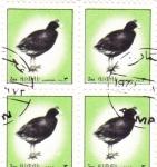 Sellos de Asia - Emiratos Árabes Unidos -  aves -Ajman