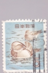 Stamps : Asia : Japan :  aves