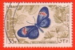 Stamps : Africa : Libya :  Heliconius Cyrbia