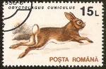 Sellos del Mundo : Europa : Rumania : ORYCTOLAGUS CANICULUS
