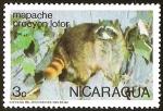 Sellos del Mundo : America : Nicaragua : MAPACHE PROCYON LOTOR
