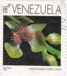 Sellos de America - Venezuela -  Darwiniera bergoldii
