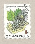 Stamps Hungary -  Reforestación 1 millón Has.