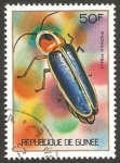 Stamps : Africa : Guinea :  photinus pyralis