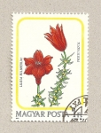 Stamps Hungary -  Lilium bulbiferum