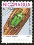 Stamps : America : Nicaragua :  escarabajo euphoria candezei