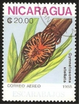 Stamps : America : Nicaragua :  escarabajo gymnetosoma stellata