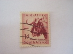 Stamps South Africa -  africana