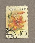 Stamps Russia -  Reina de Africa