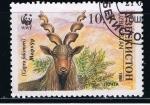Stamps Asia - Uzbekistan -  Capra falconeri