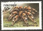 Stamps : Africa : Tanzania :  eurypelma