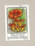 Stamps Hungary -  Seta Omphalus olearius