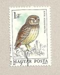Stamps Hungary -  Athene noctua