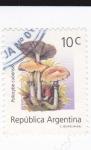 Sellos de America - Argentina -  Psilocybe cubensis