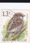 Stamps Belgium -  aves