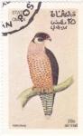 Stamps Asia - Oman -  Alcon Peregrino
