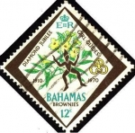 Stamps America - Bahamas -  Jubileo de diamante de la asociación de muchachas guías.