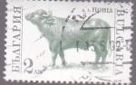 Stamps Bulgaria -  buey