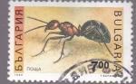 Stamps Bulgaria -  insectos- hormiga