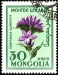 Stamps Mongolia -  Flores de Mongolia. Campanula glomerata.