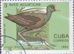 Sellos de America - Cuba -  Aves Acuaticas - Cuba Correos 1993