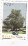 Stamps Spain -  Arboles monumentales-Ahuehuete Jardines del Retiro  (Madrid)  (B)