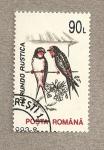 Stamps Romania -  Hirundo rustica