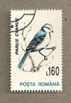 Stamps Romania -  Parus cyanus